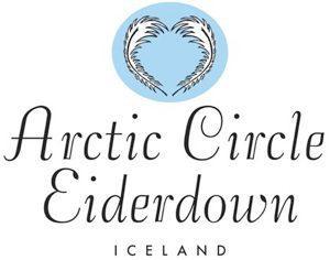 cropped-cropped-ACE_logo.jpg